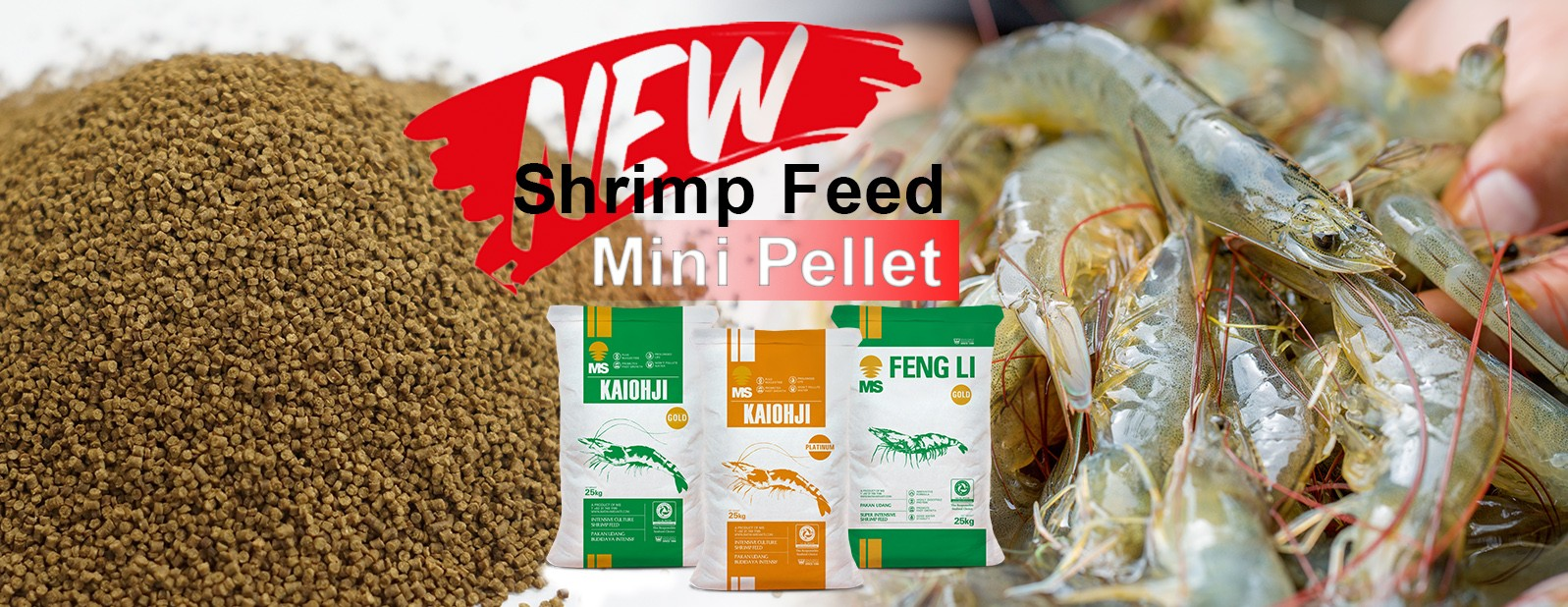 SHRIMP FEED - PT. Matahari Sakti