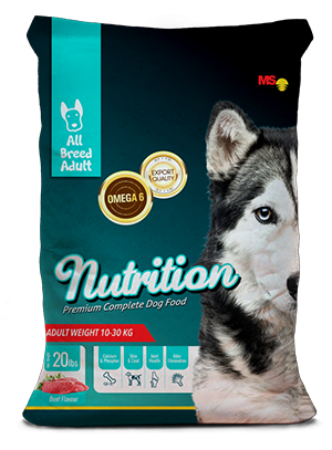 Nutrition Adult